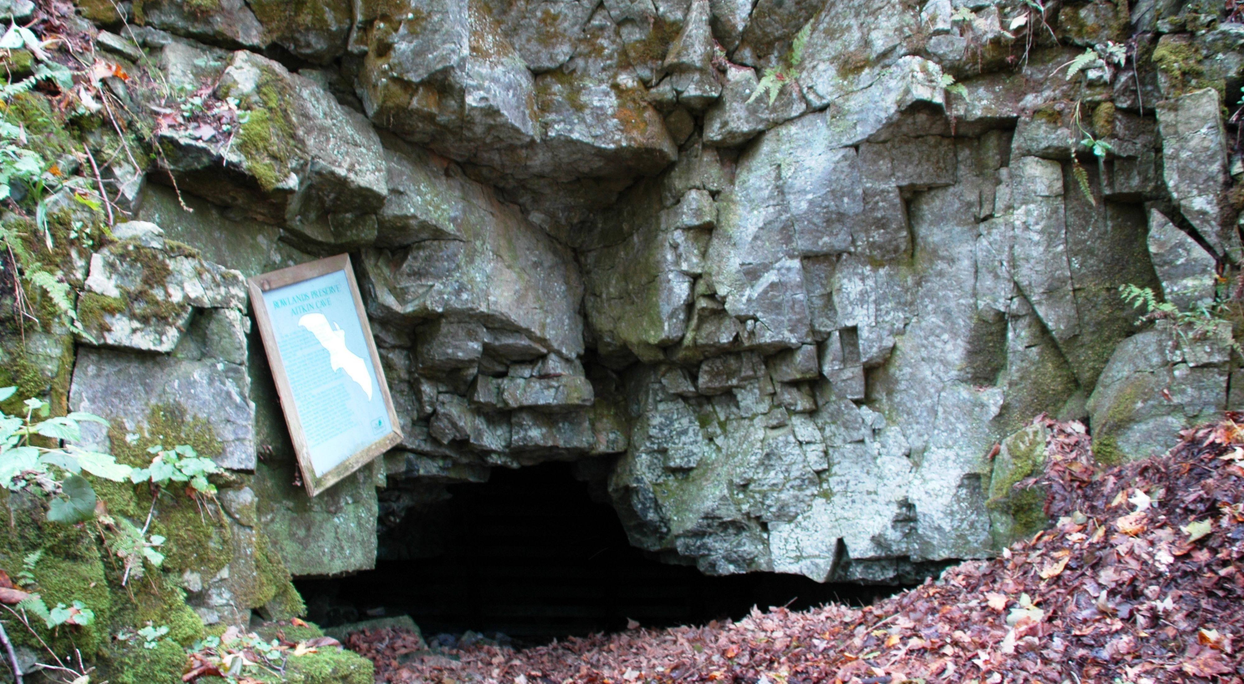 A sign marks the entrance of a cave.