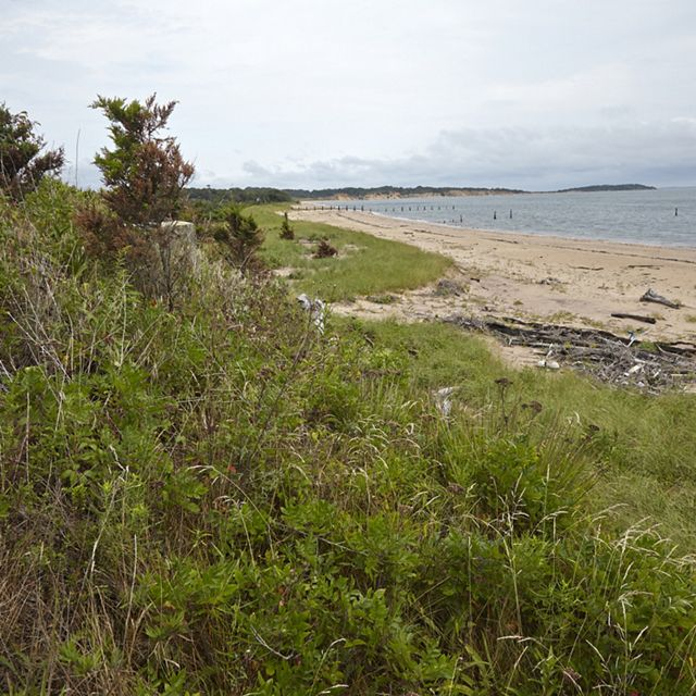 Overlooking a sand dune on Plum Island with ocean shore