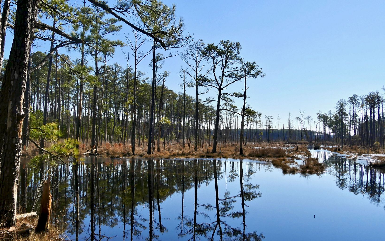 As the preserve and other places around the Chesapeake Bay gradually transform, local communities face tough decisions about how best to preserve the region's history.
