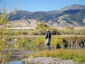 Angler fishing the blue-ribbon trout waters of the Ruby River