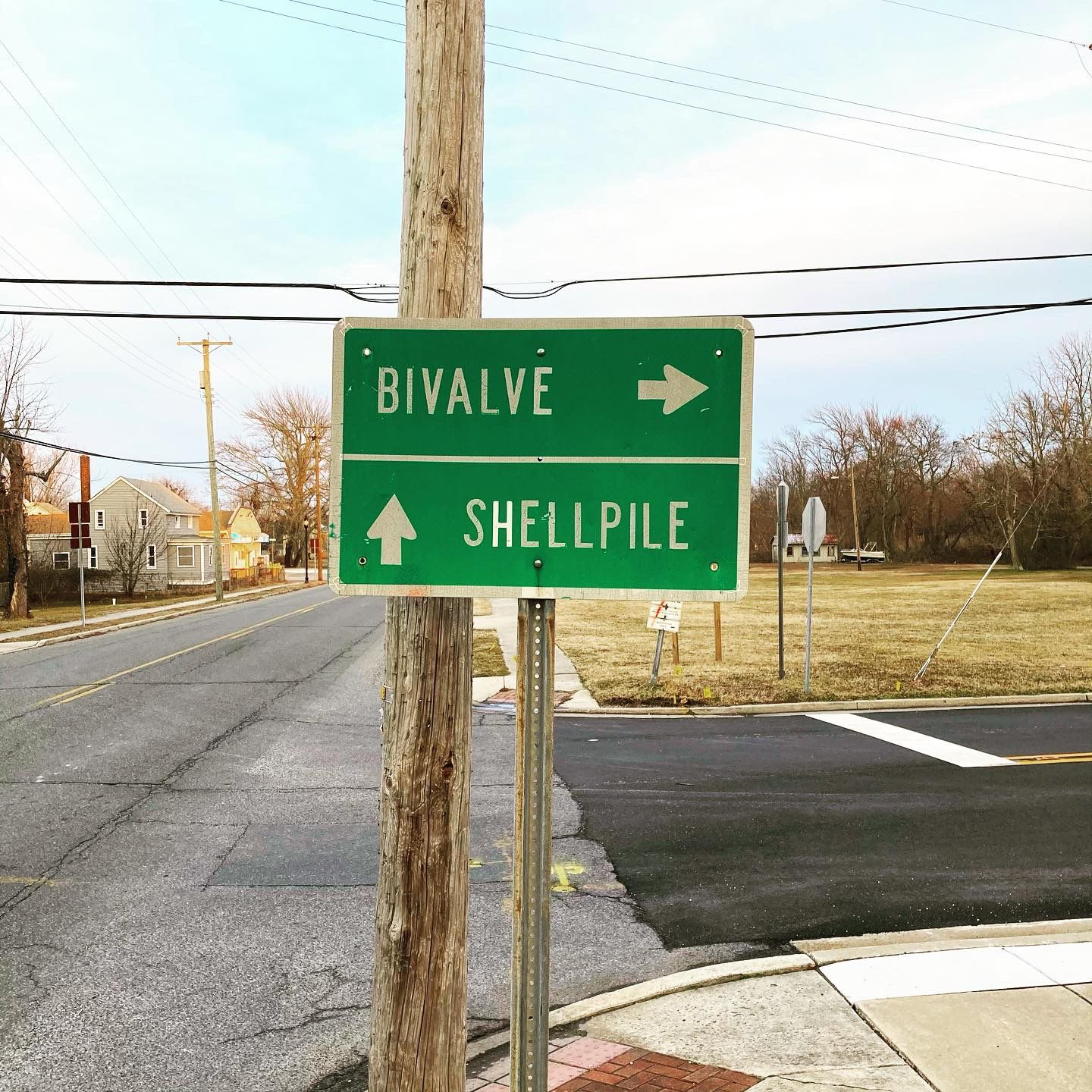 """Road signage that reads """"Bivalve"""" and """"Shellfish"""""""