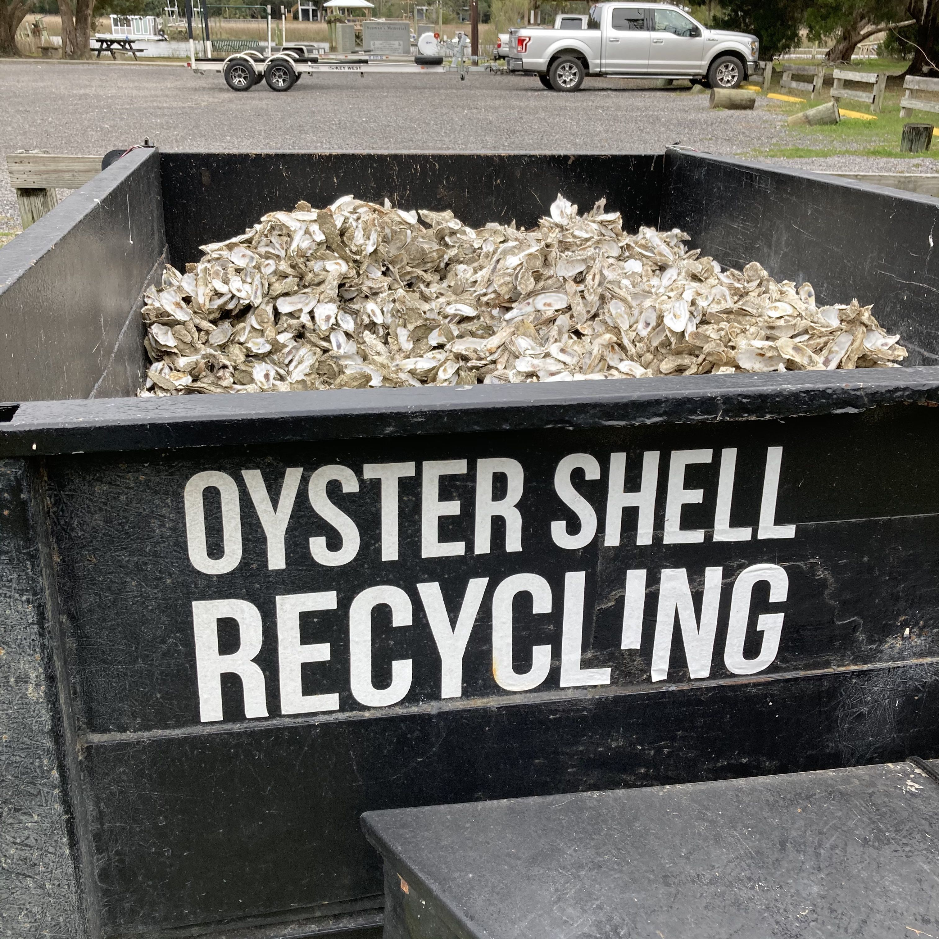 """A large bin filled with oyster shells that reads, """"Oyster Shell Recycling""""."""