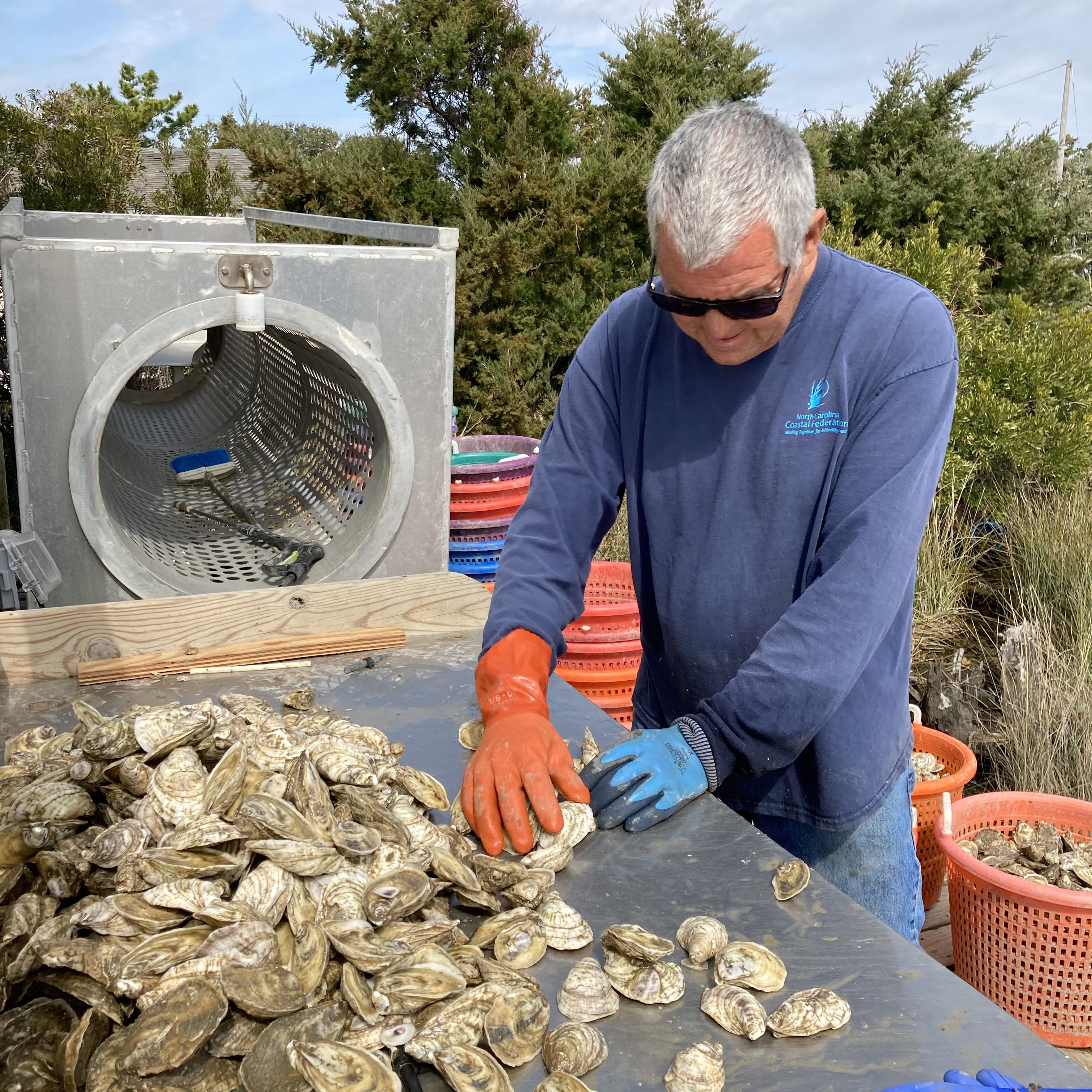A man sorting oysters.