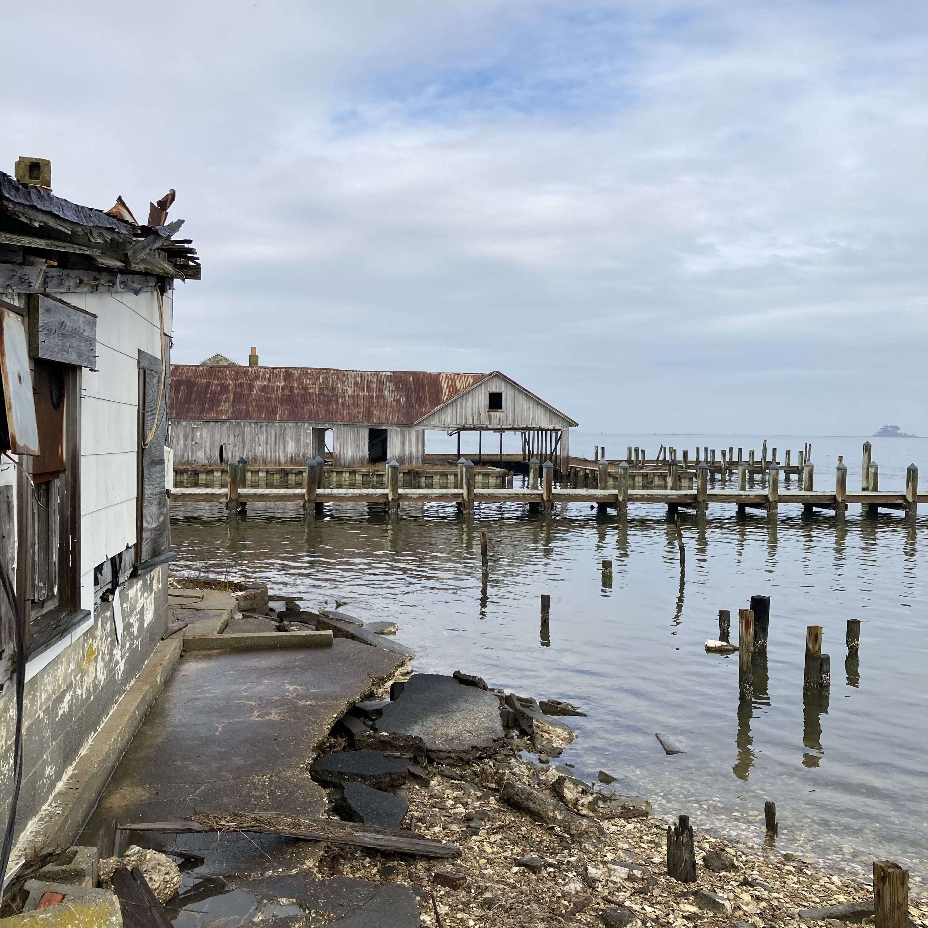 A pier on an oyster farm that has sustained storm damage.