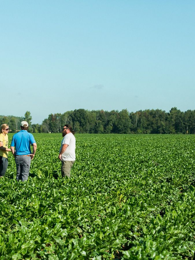 Three people standing in middle of agricultural field.
