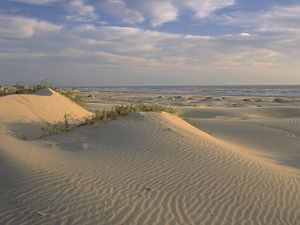 White sand dunes on South Padre Island in Texas.