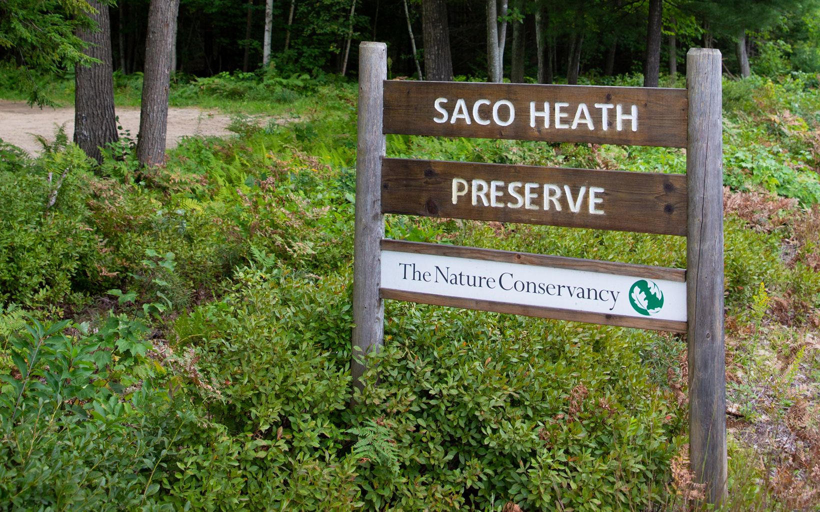 Road sign says Saco Heath and The nature Conservancy