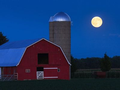 Farm near Saginaw Bay, Michigan.
