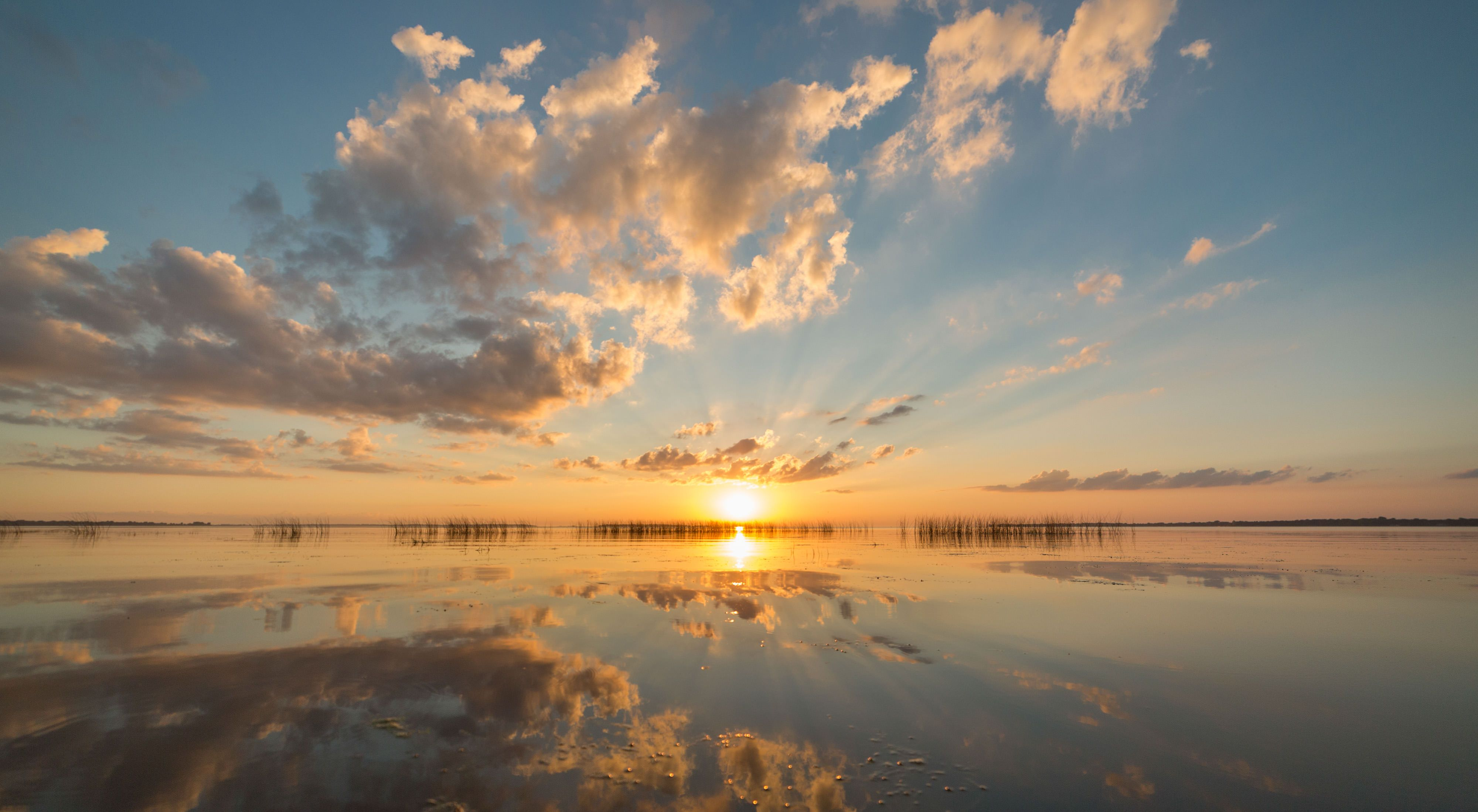 Saginaw Bay is one of the world's largest contiguous coastal wetland systems, supporting a robust wildlife fishery, habitat for migratory birds, and water-based recreation.