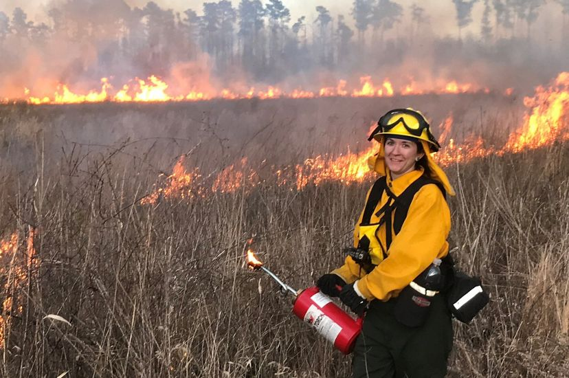 A woman wearing yellow fire retardant gear holds a red drip torch at a controlled burn. Lines of fire burn behind her in a stand of tall grass.