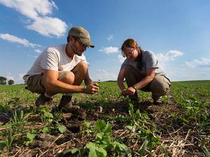 Sarah and Benoit Delbecq crouching, checking soil.