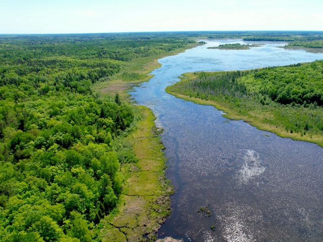 The Fond du Lac Indian Reservation sit at the southern border of the boreal forests, an area that may be vulnerable to climate change.