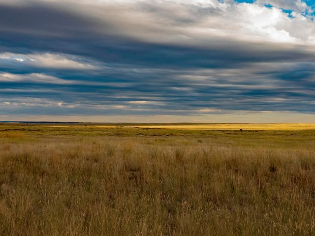 Brown grass stretches to the horizon under a partly cloudy sky.