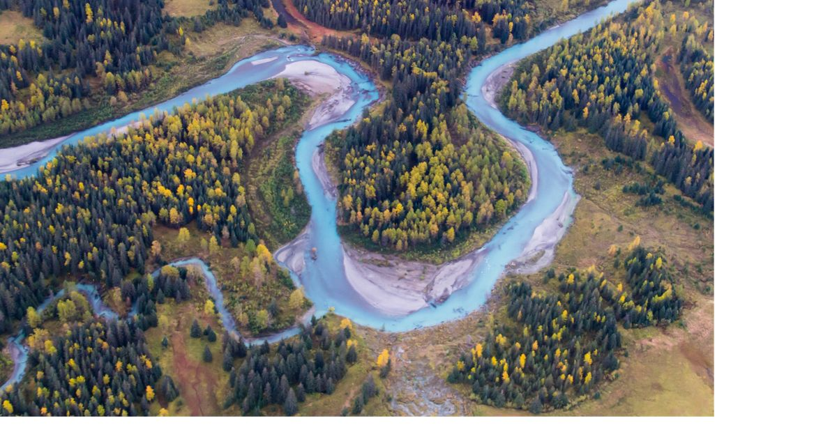 A glacial-blue stream meanders through the Fall color in the cottonwoods.