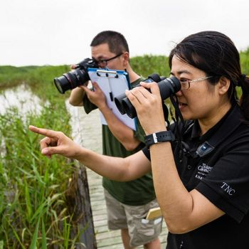 Yang Bo and Dong Dazheng examine different species of grasses growing in the Dongtan Wetlands in Shanghai.