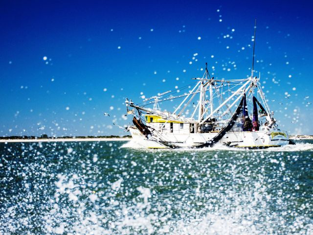 Water splashes in front of a white shrimp boat under a bright blue cloudless sky.