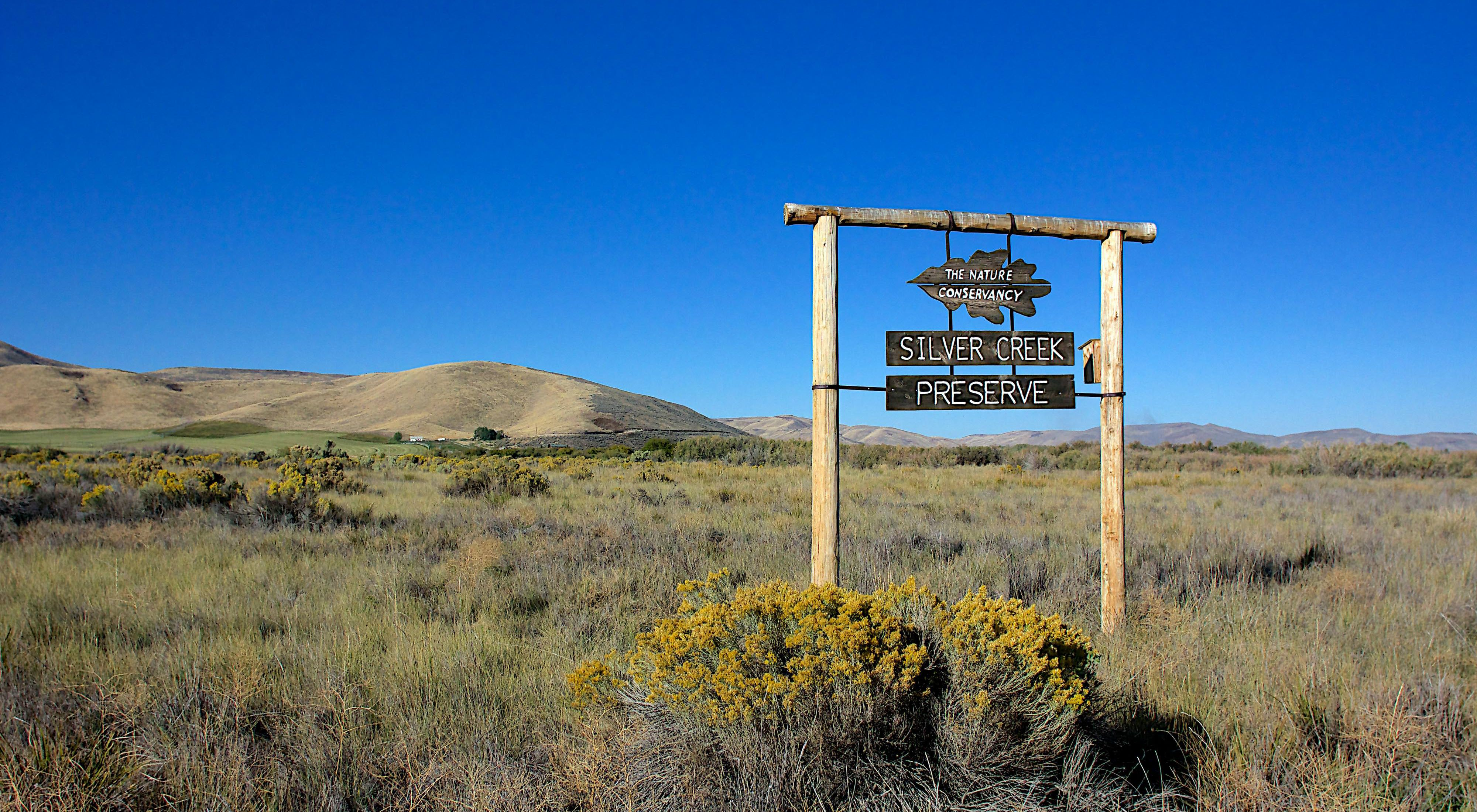 Photo of sagebrush and Silver Creek Preserve sign.