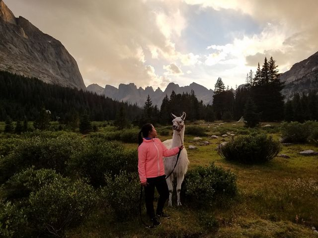 Llama and handler under a cloudy sky in Wyoming.