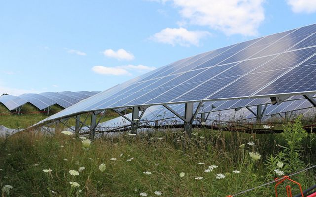 Solar panels in a green meadow with blue skies.