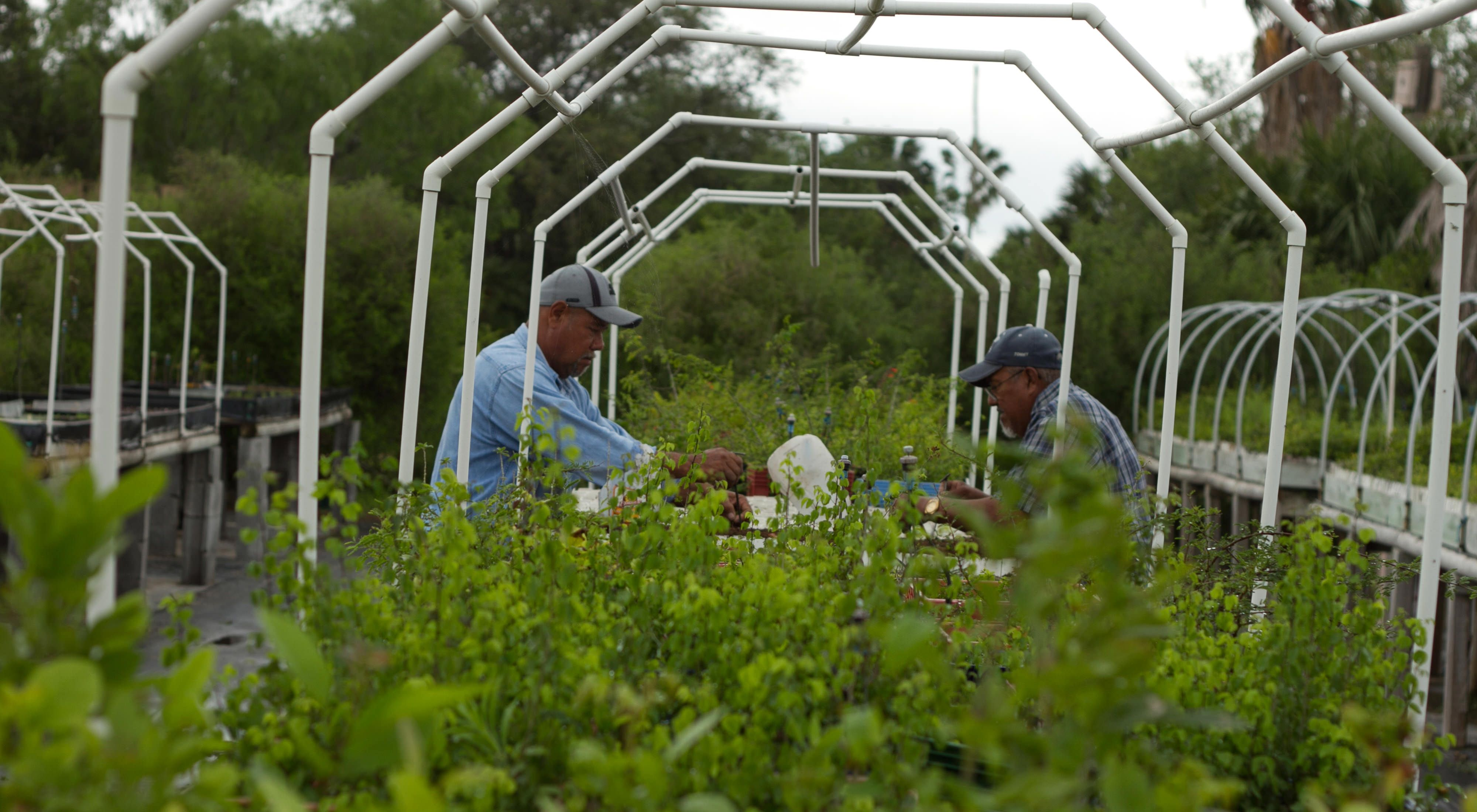 Southmost agricultural work_600x400