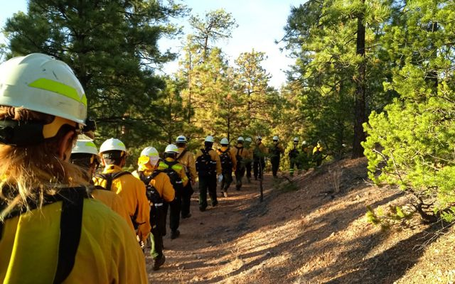Participants of a fire training exchange walk toward assignments for a controlled burn.