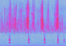 Image of spectrogram showing bird songs and calls at the St. John River Forest.