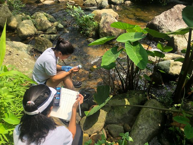 Two students are taking scientific samples of stream water.