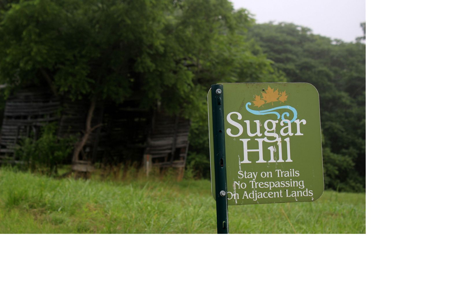 Located in Virginia's Clinch Valley near St. Paul, Sugar Hill is slated to become part of the commonwealth's newest state park.