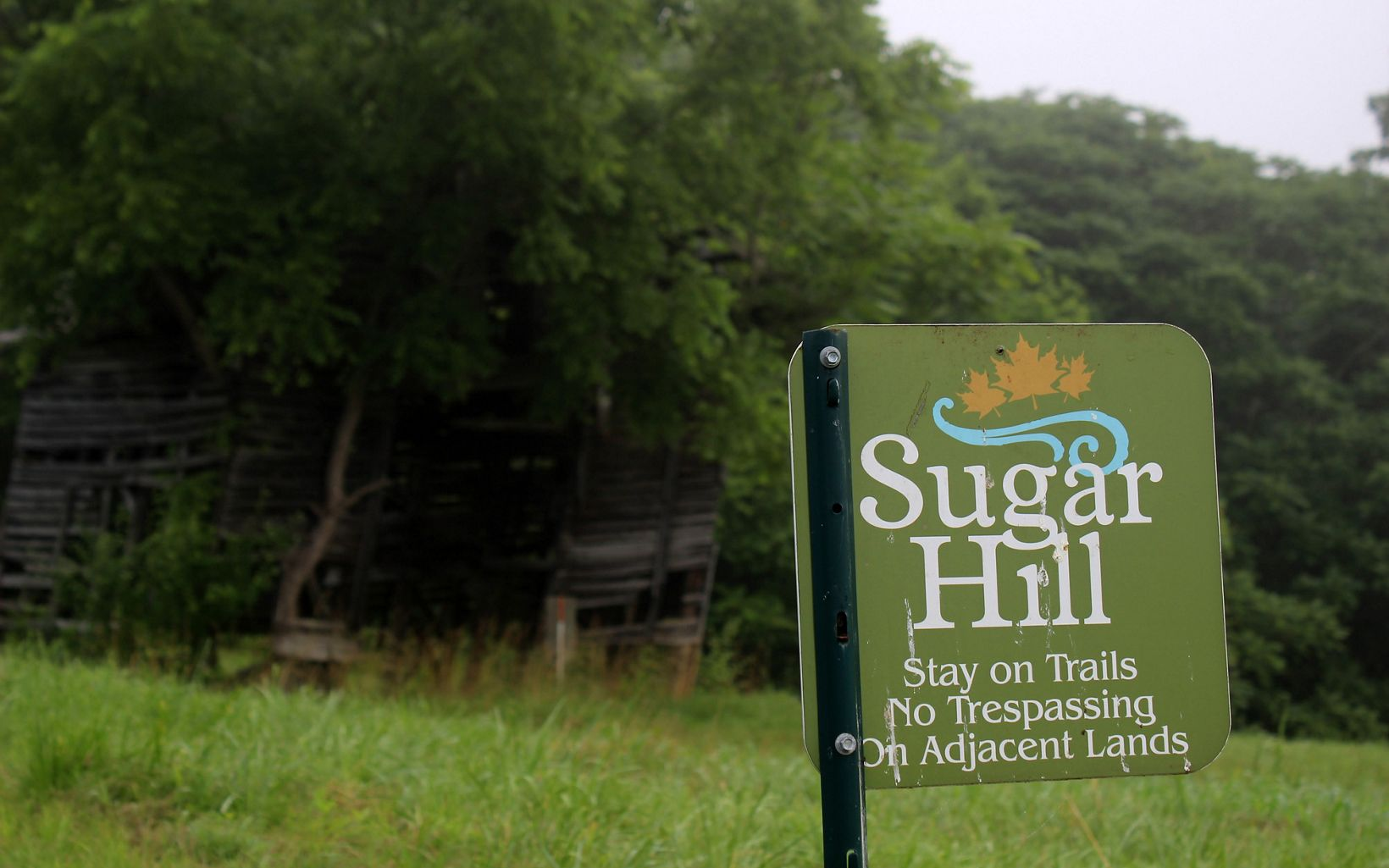 A green metal sign labeled Sugar Hill asks visitors to stay on the trail. The remnants of a cabin are visible in the background under a grove a trees.