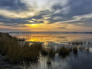 Sunrise over a tidal marsh. The orange sun is obscured behind a low cover of clouds. The light is reflected on the wide calm surface of the water. Tall marsh grass dominates the foreground.
