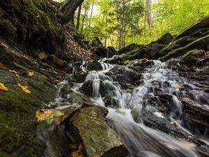 A waterfall cascading over bedrock surrounded by mossy rocks and trees.