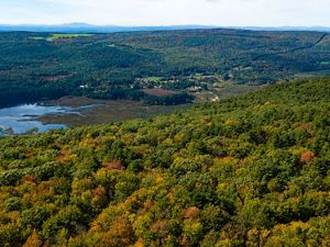 A forest of trees just beginning to change color on a hill overlooking a lake with more forest and mountains in the background.