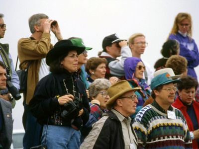 Image from 1993 of the crowd watching as bison are released back on the prairie.