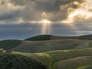 Rolling hills by the ocean at Dangermond Preserve in California.