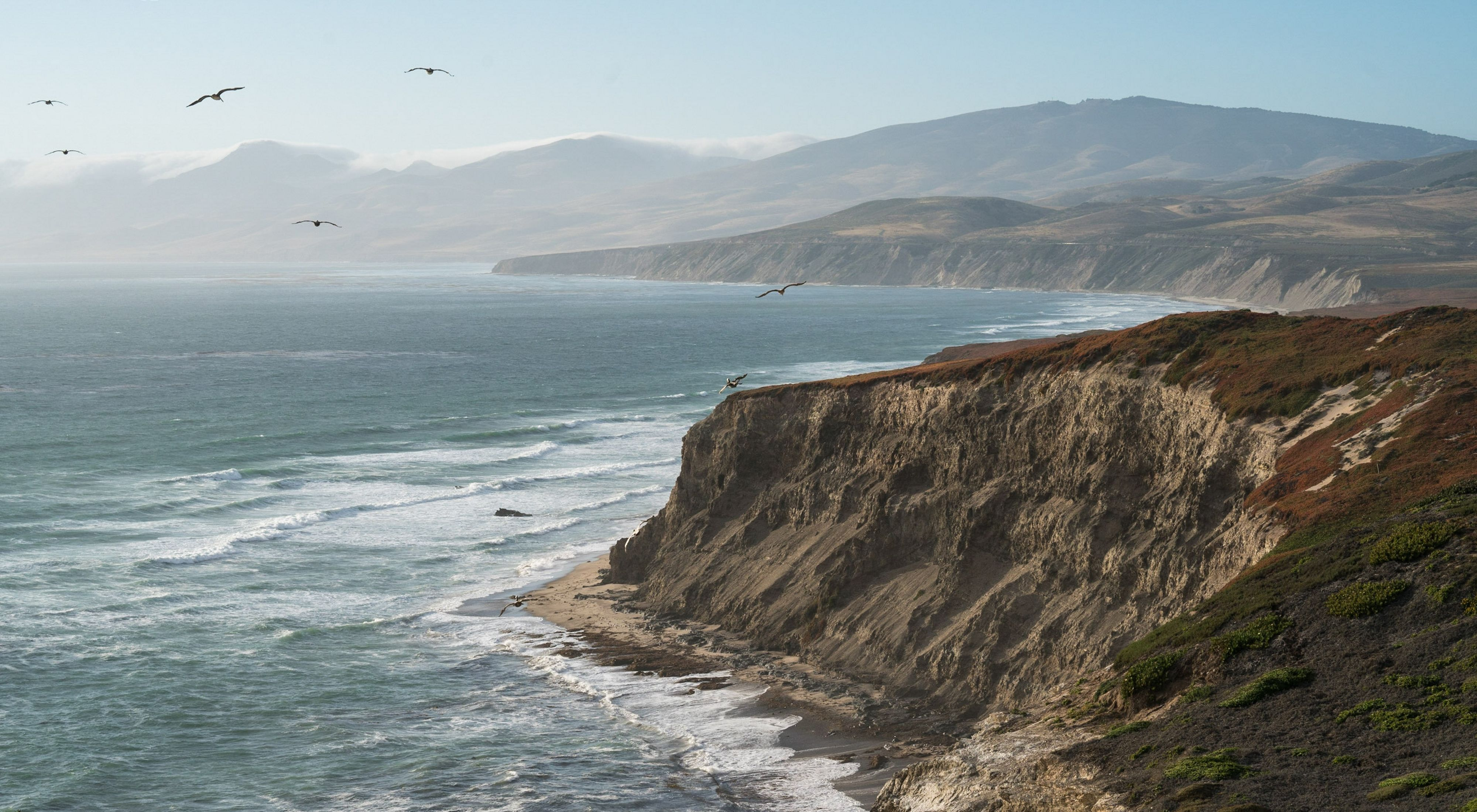 The Nature Conservancy Preserves 24,000-acre Coastal Ranch