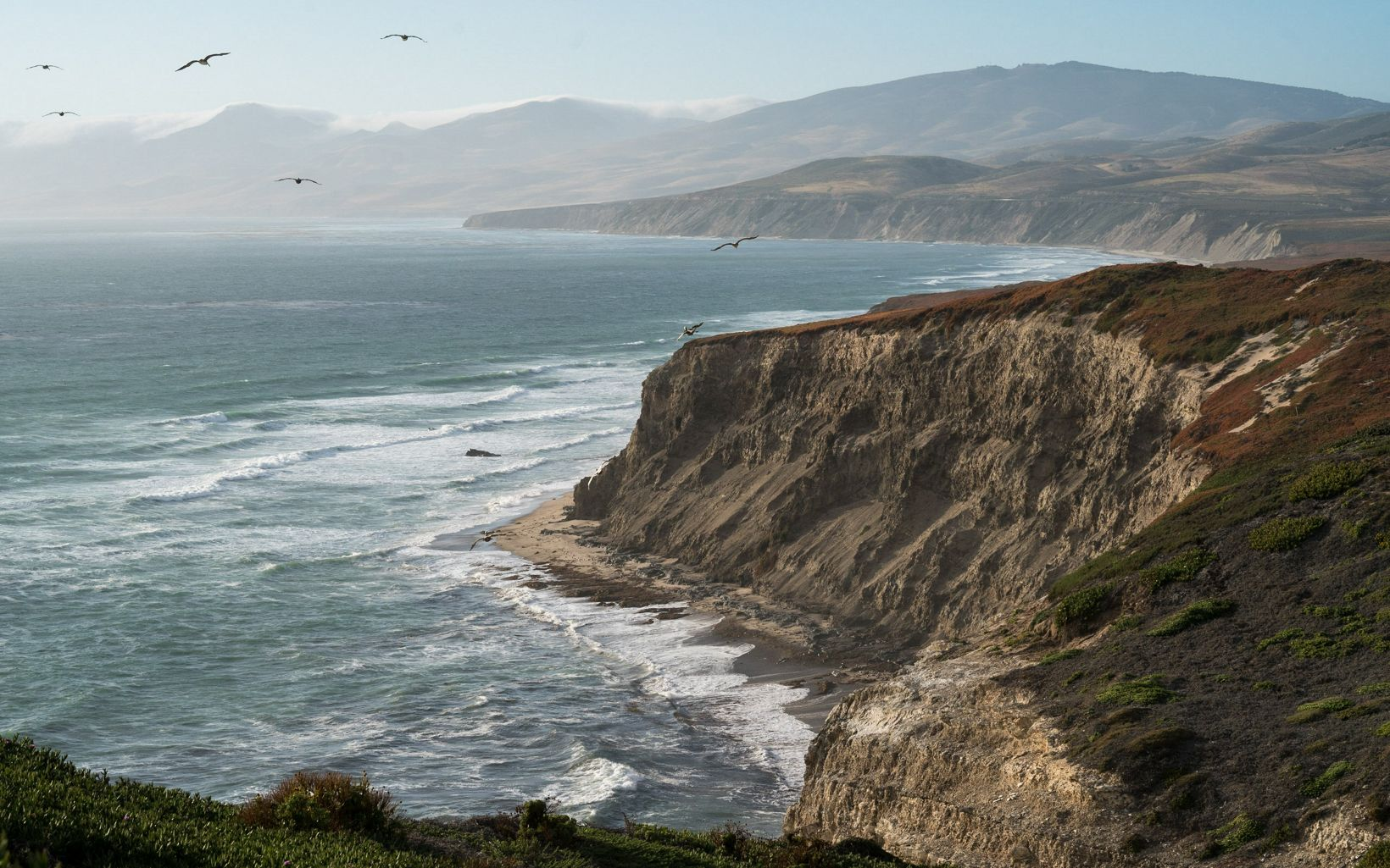Jack and Laura Dangermond Preserve, a critical juncture between Northern and Southern California