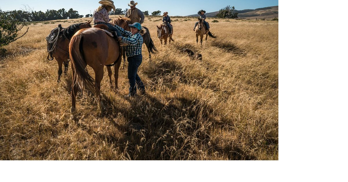 A ranch family rides horses in a grassy area