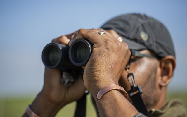 birder birdwatcher looks through binoculars at birds in field