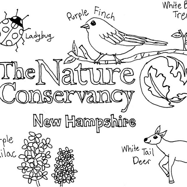 New Hampshire staff drew their favorite preserves for you to color!
