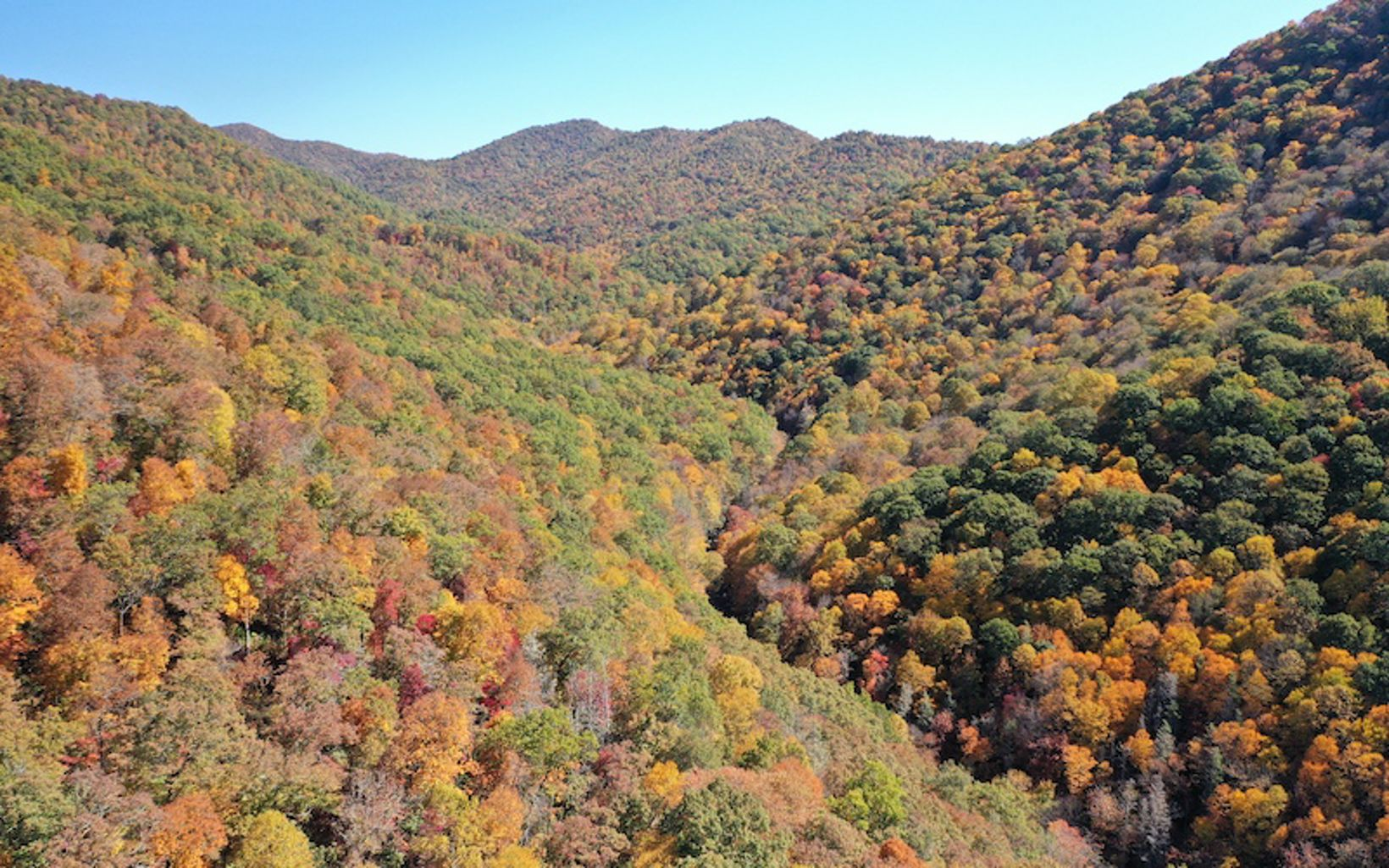 mountains with fall foliage