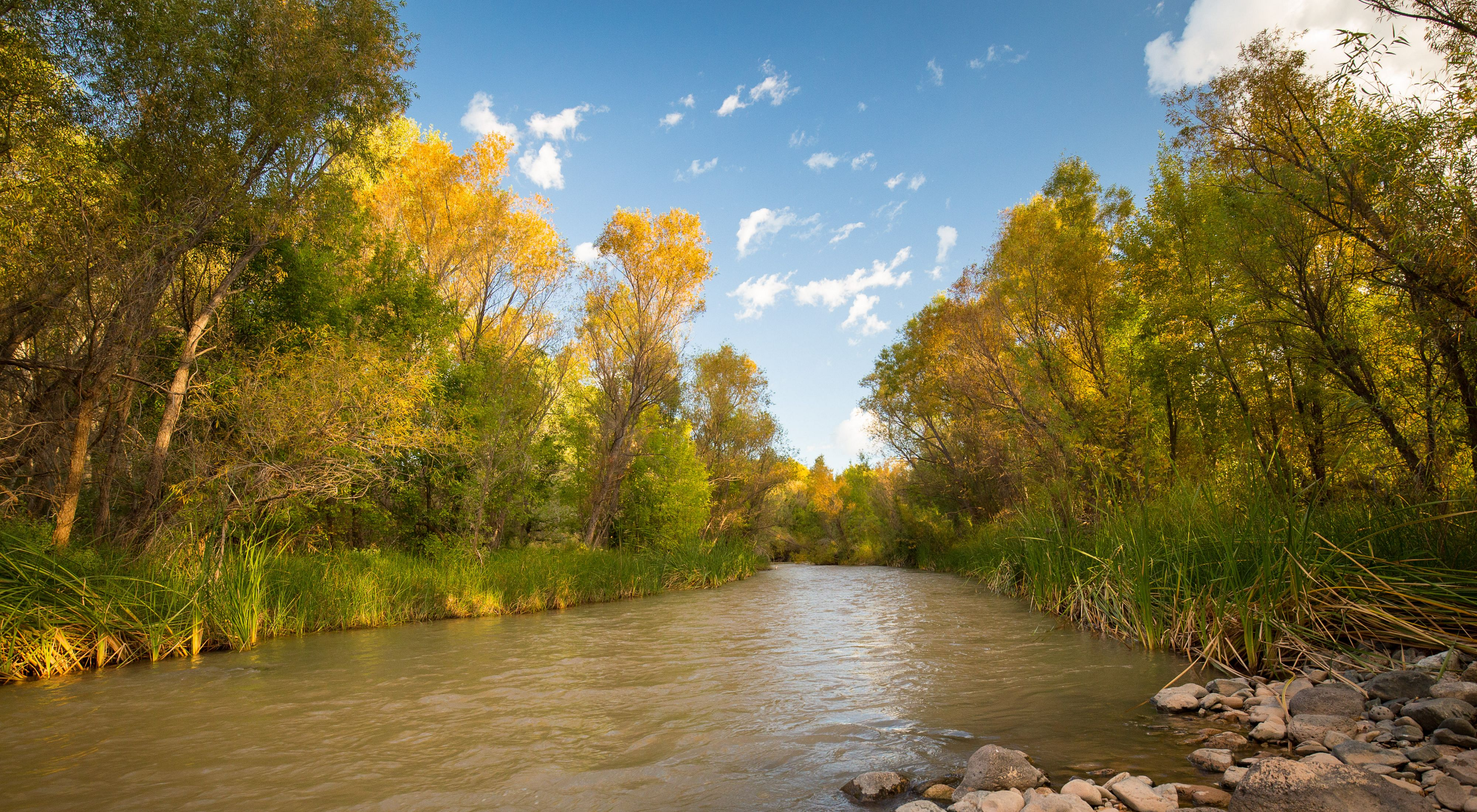 fall colors over the river