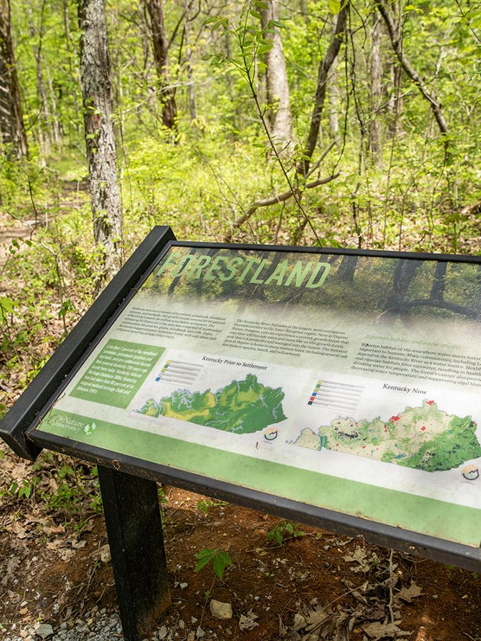 Trail signage that reads FORESTLAND with maps.