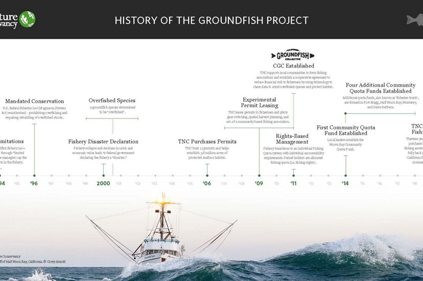 History of the TNC Groundfish Project.