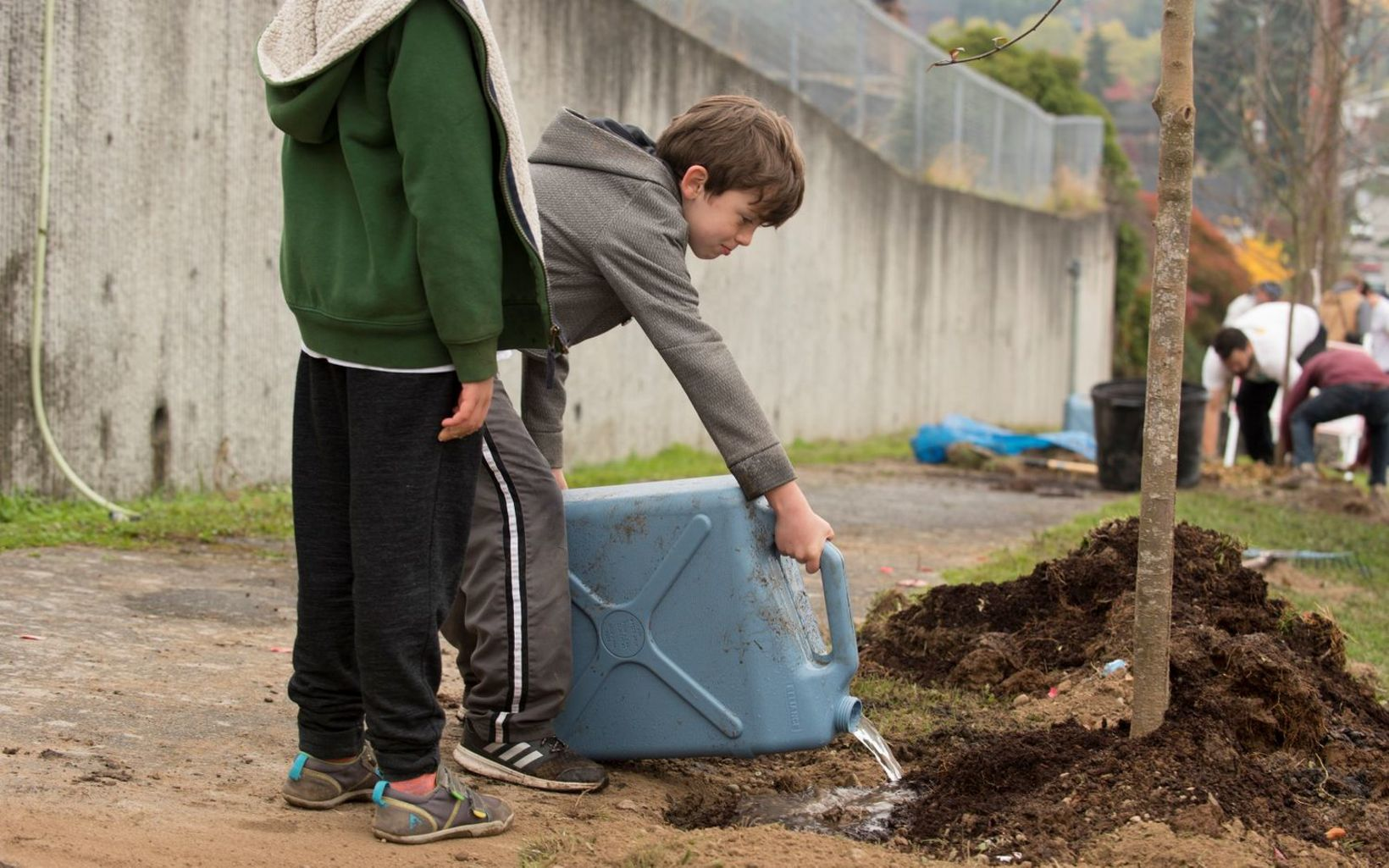 volunteer day and Duwamish Valley Youth Corps tree give-away are both bringing the power of trees into urban neighborhoods.