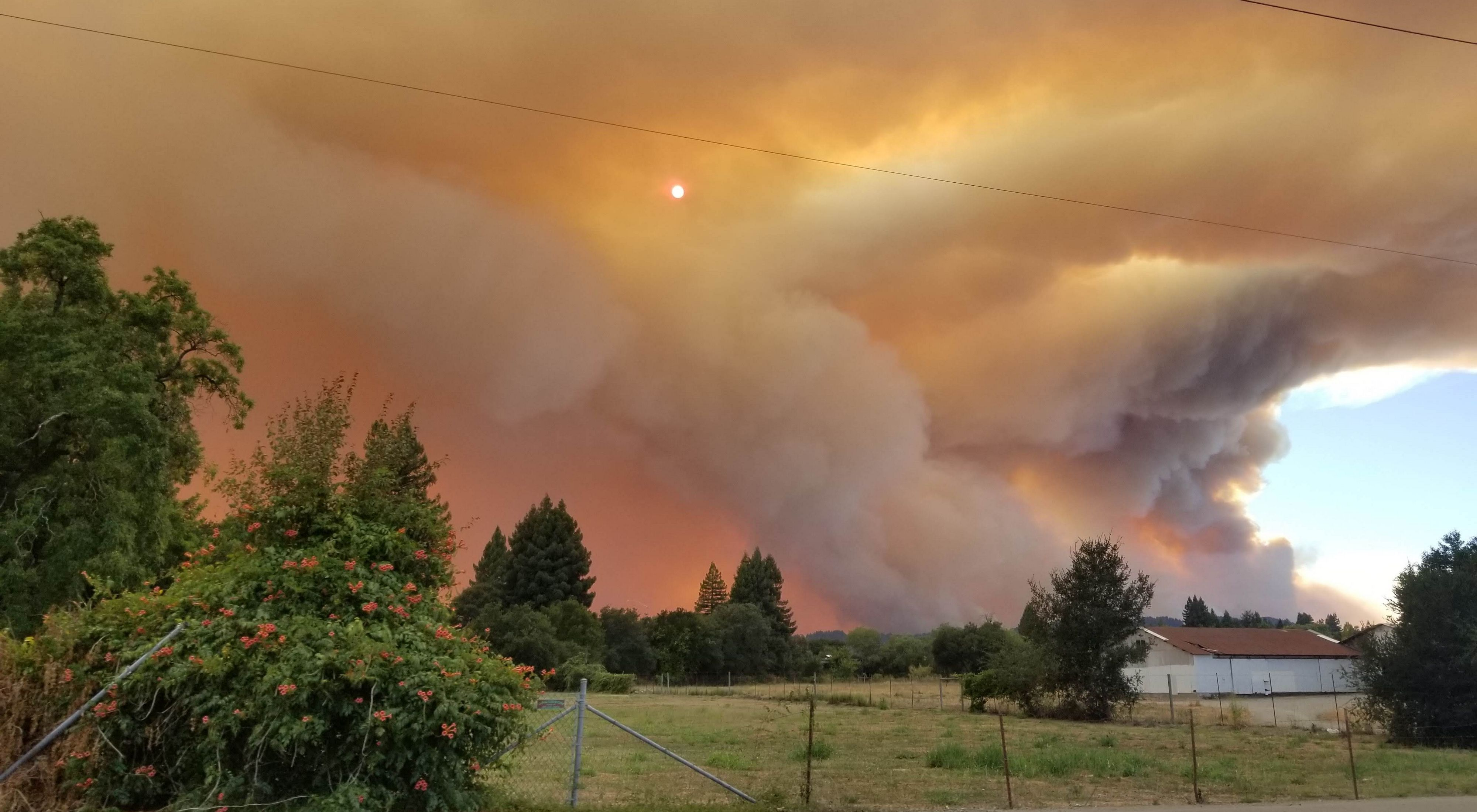 Large plumes of smoke sweeping through pine and oak forests in grassland meadows terrorizing the community in Healdsburg, California.