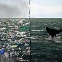 Choices of a future ocean. Plastics on the left, healthy whale on the right.