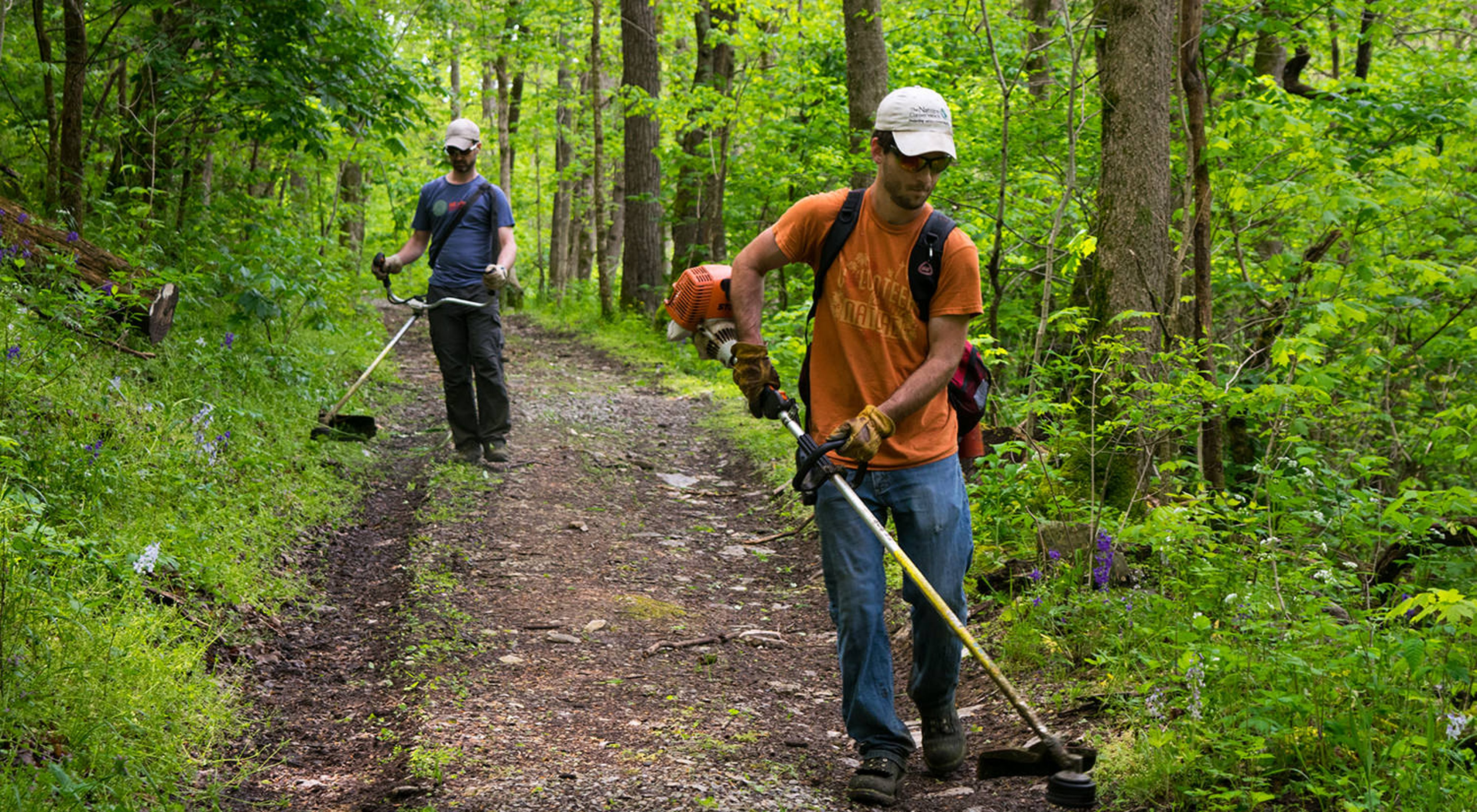 Two TNC employees use weed trimmers to clear a hiking trail.
