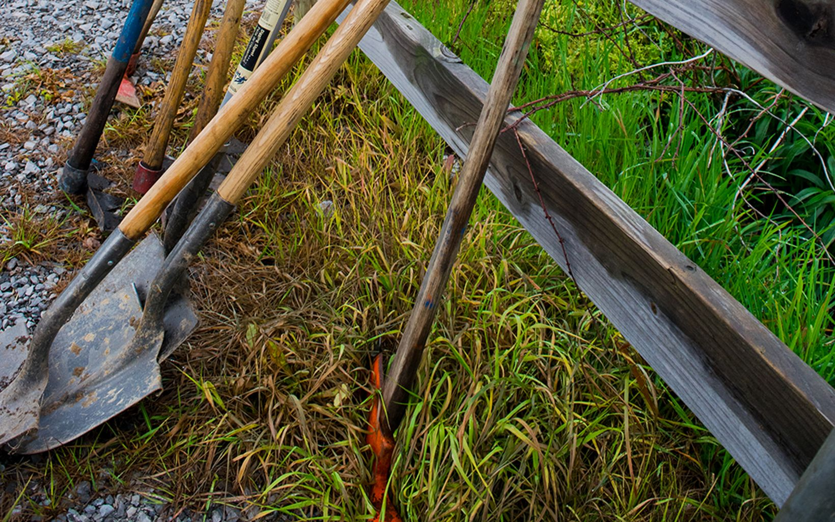 Shovels and other tools lean against a plank fence.