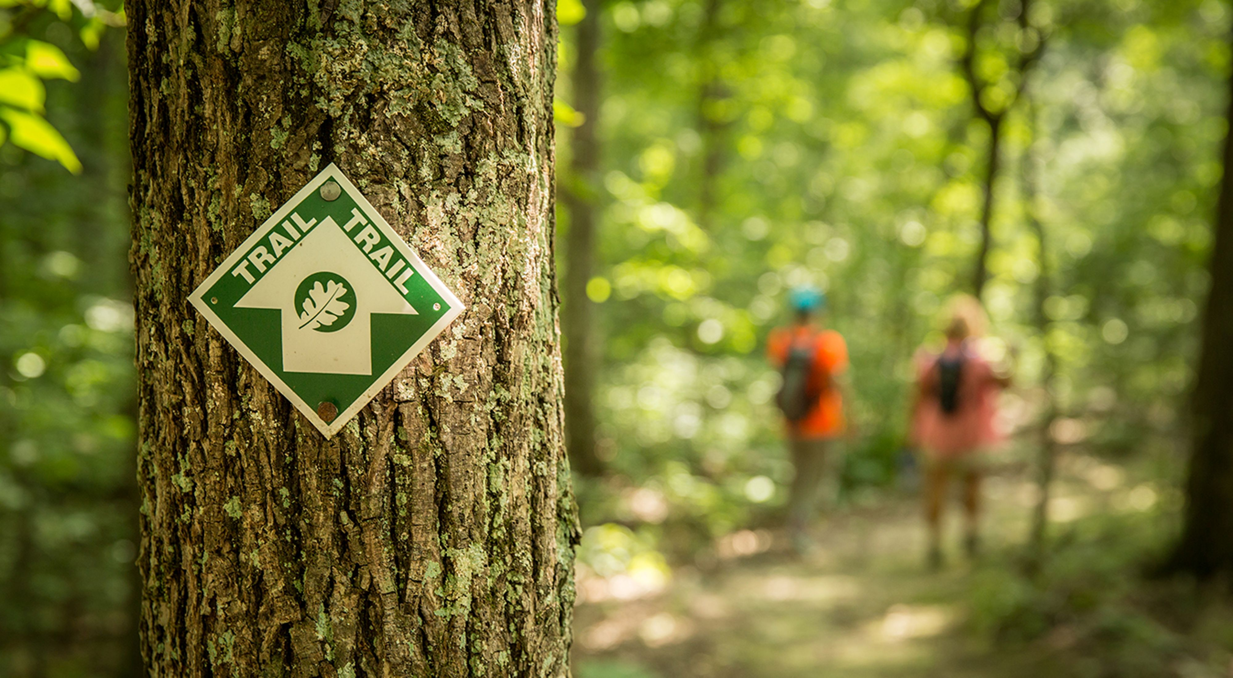 Photo of a TNC trail marker on a tree.