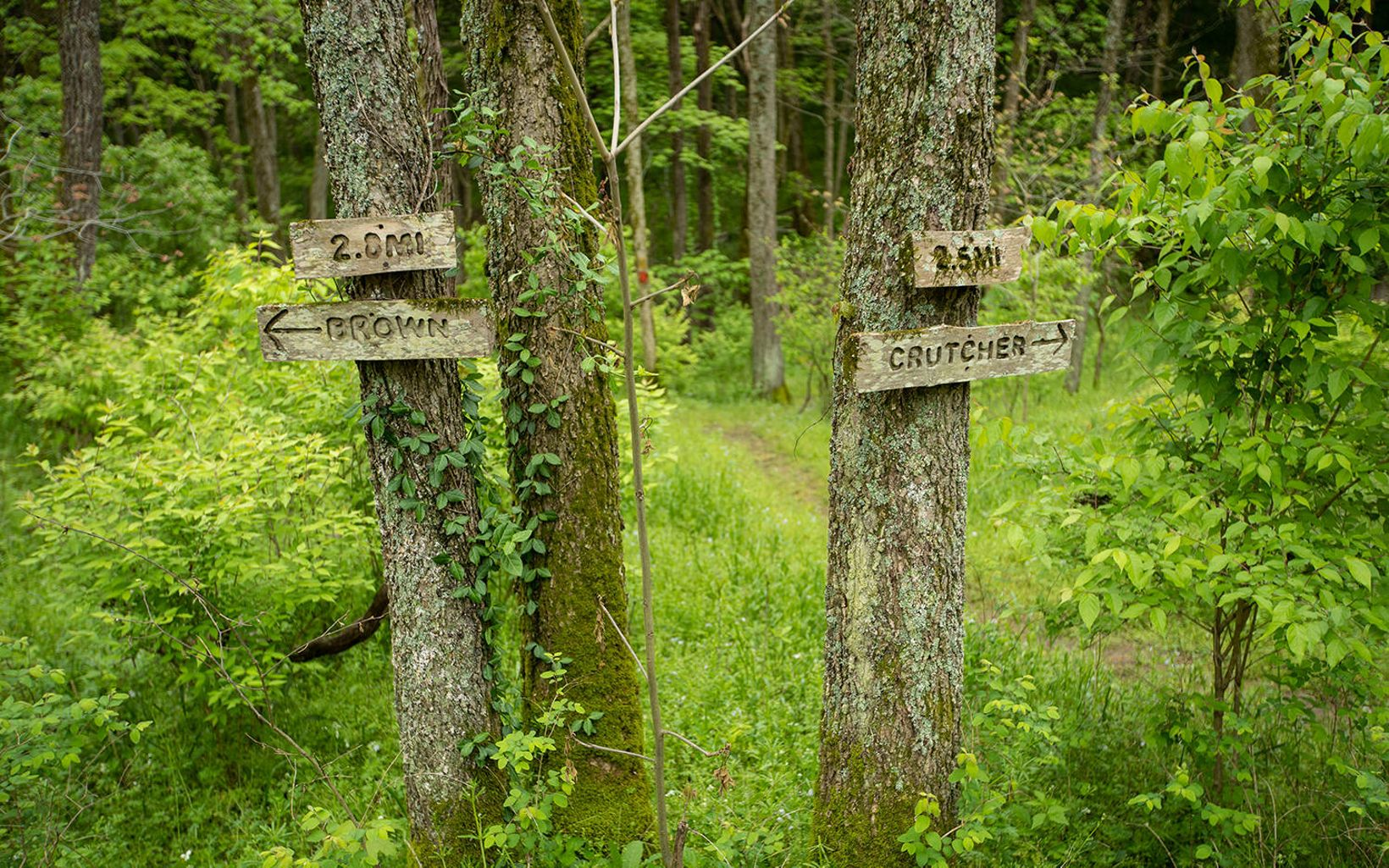 Signs on trees point to Brown and Crutcher nature preserves.
